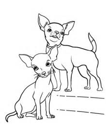 chihuahua coloring pages chihuahua coloring pages for coloring home