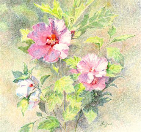 watercolour flower portraits 1782210822 vikki bouffard artist chainimage