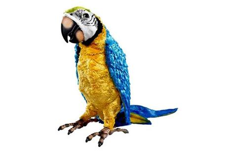 Baby Bedroom Decor squawkers mccaw furreal interactive parrot the green head