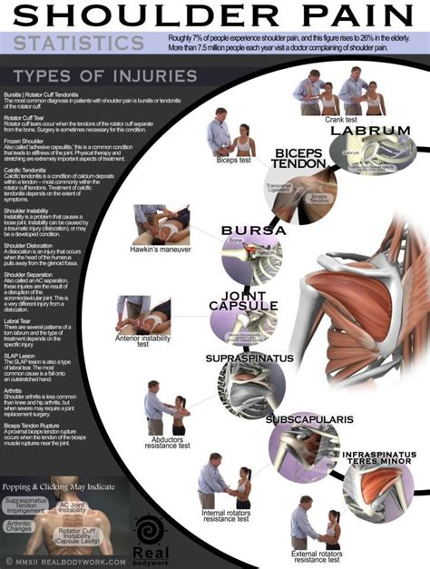 Sport Therapy For The Shoulder Evaluation Rehabilitation And Return 17 best images about basic shoulder on and neck therapy and