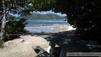 parguera boat rental la parguera boat rental mangrove cays puerto rico day