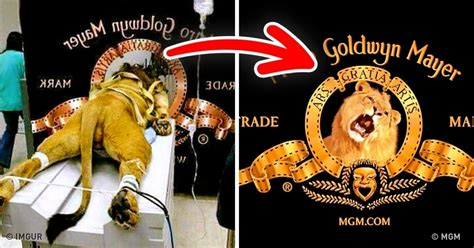 Spanish Style Home Interior 12 Astonishing Facts About Famous Logos You Didn T Know