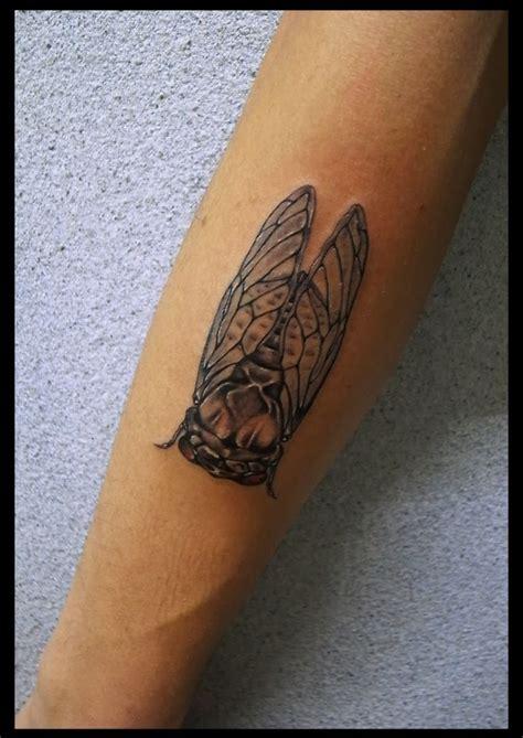 cicada tattoo 17 migliori idee su tatuaggio a forma di cicala su