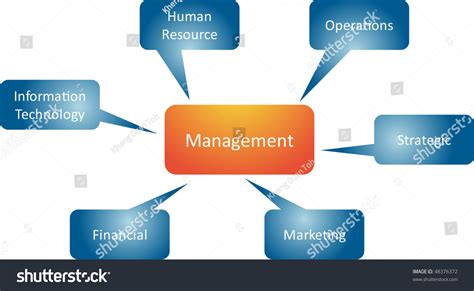 List Of Mba Branches by Management Branches Business Strategy Concept Mind Stock