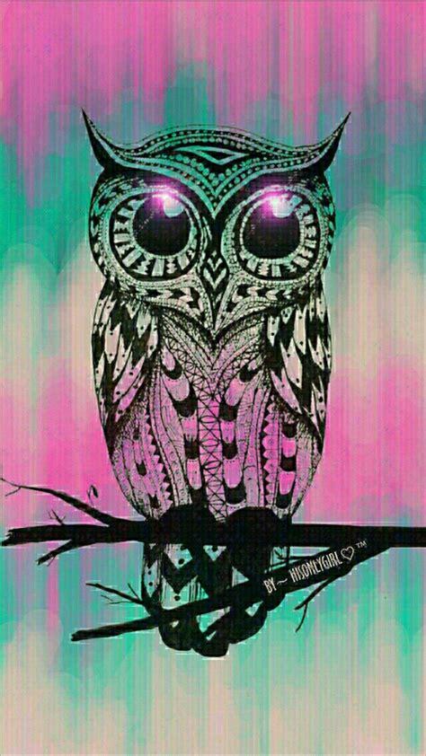 owl background owl background 183