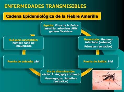 cadena epidemiologica fiebre tifoidea epidemiolog 237 a enfermedades transmisibles 2016
