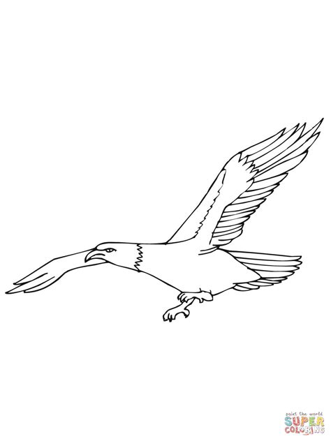 coloring page eagle flying flying eagle coloring coloring pages