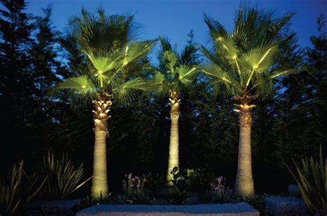 illuminazione alberi luce da esterno 9 modi per illuminare bene il giardino