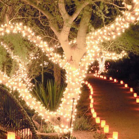 longest last christmas lights 480 warm white led chasing lights