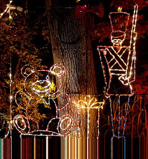 bronx zoo christmas lights bronx zoo flipping off lights for holiday fest ny daily news