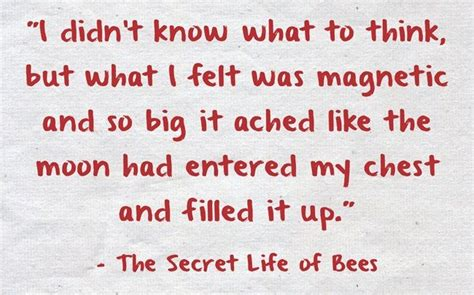 theme quotes from the secret life of bees 22 best the secret life of bees images on pinterest
