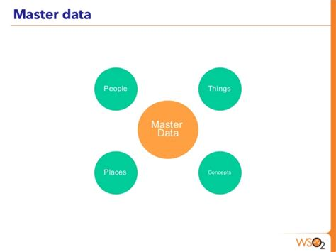 master data management master data management using wso2 platform