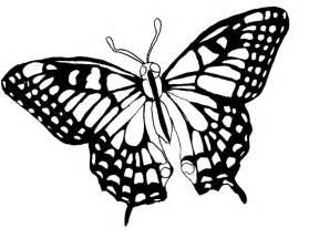 Dessin 195 Colorier De Papillon A Faire Sur L Ordinateur