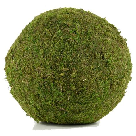 Green Decorative Balls by 33 Best Images About Decorative Balls On Pinto