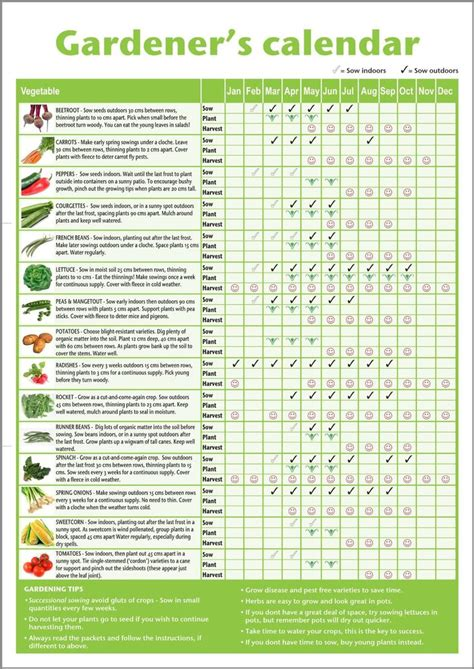 herb planting calendar best 25 vegetable gardening ideas on pinterest