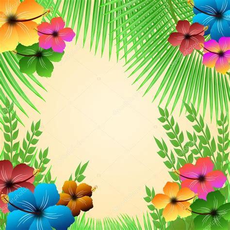 Lula Flower Top 69 best lula images on luau birthdays and ideas