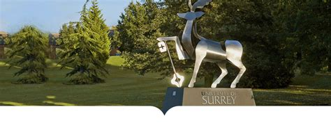 Of Surrey Mba Ranking by Top Ranking Universities In The Uk 2018