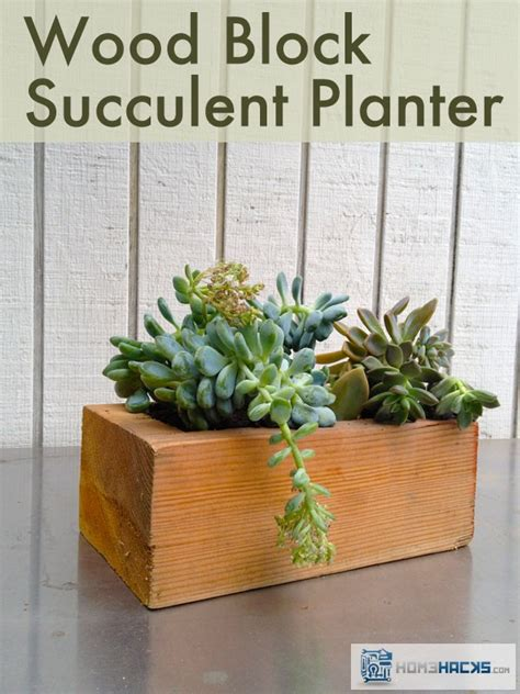 how to make a succulent planter make a succulent planter from scrap lumber homehacks