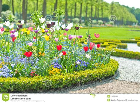 bed in summer delightful flower bed in the summer park royalty free stock image image 31605146