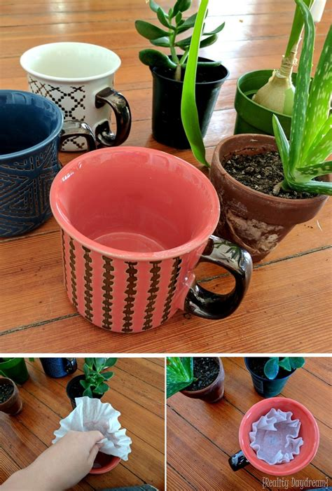 Make A Mug Into A Planter By Drilling Drainage Holes What To Put In Bottom Of Planter For Drainage