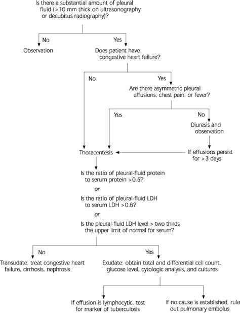 Light Criteria by Tips From Other Journals American Family Physician