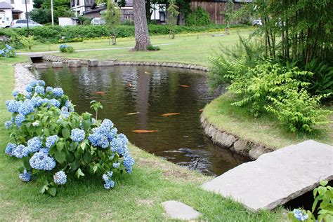 pictures of fish ponds in backyards backyard fish farming raise fish in your home pond