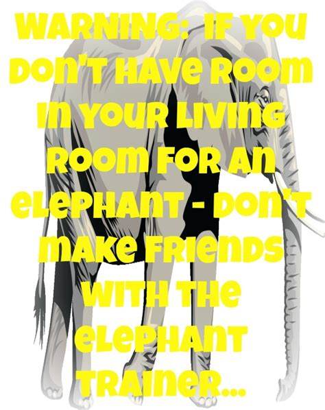 Elephant In The Room Lyrics by 62 Best Elephant In The Room Images On Lyrics