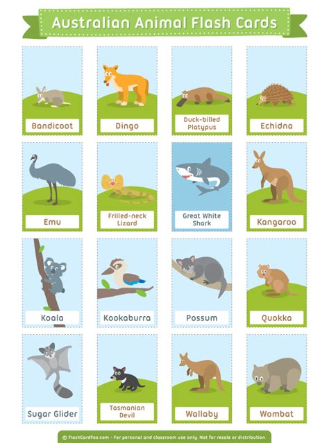printable flash cards of animals free printable australian animal flash cards download