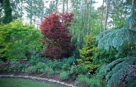 1000 images about jardin on pinterest shade garden landscaping and drought tolerant