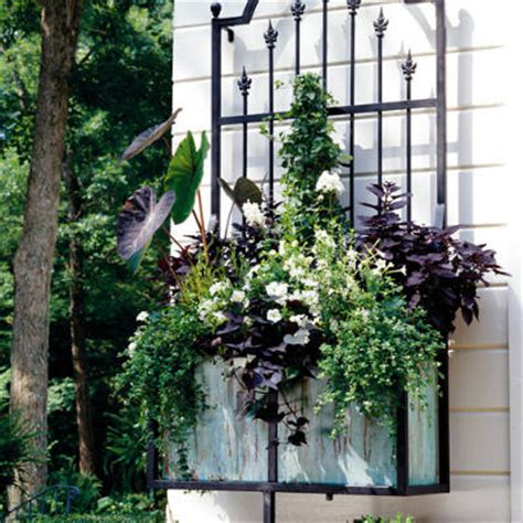 southern living container gardening spectacular container gardens white flowers