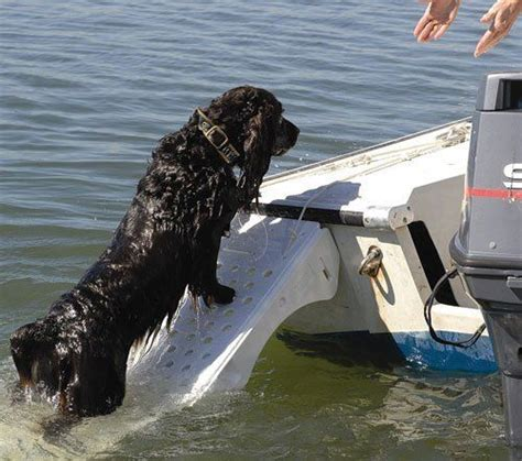 boat pet r 17 best images about on the pontoon on pinterest