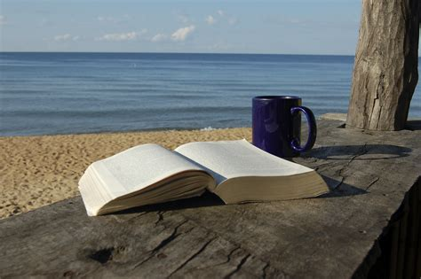 a seaside books book coffee mug the of christopher pierznik