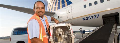 Animal Air Freight by Live Animal Charters Qas Charter