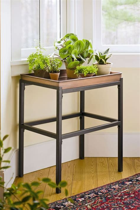 Planter Stands Indoors by 1000 Ideas About Indoor Plant Stands On Plant Stands Indoor And Antique Bird Cages