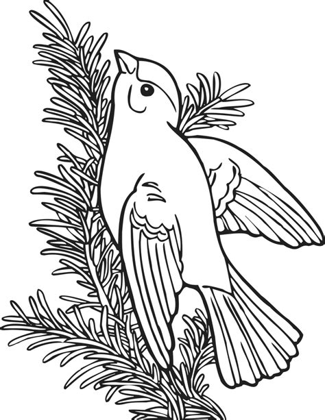 coloring book willow goldfinch educationcoloringpages