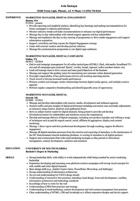 digital resume format marketing manager digital resume sles velvet