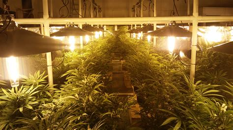 light mover rail shortened for indoor grow lights smart