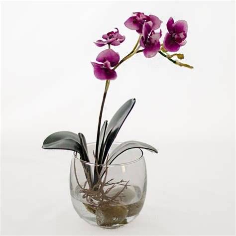 Orchid In Glass Vase by Mini Orchid Plant Glass Vase Artificial Faux Arrangement