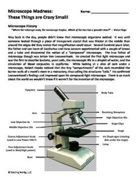 prentice hall lab bench prentice hall lab bench 4 7 1 answer key viruses guided reading pearson