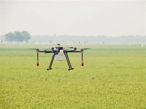 Drone Sembur Racun mada perkenal silibus sembur racun guna dron carigold forum