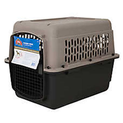 grreat choice crate carriers crates petsmart
