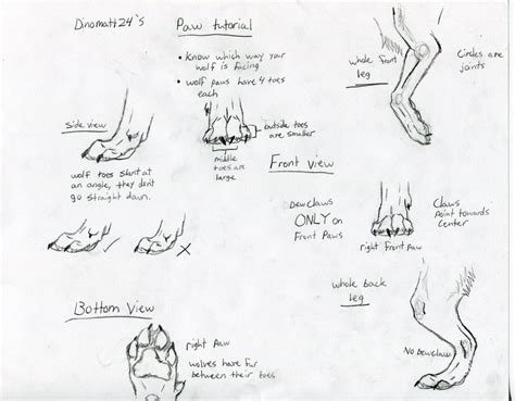 werewolf paw tutorial tutorial wolf paws by dinomatt24 on deviantart