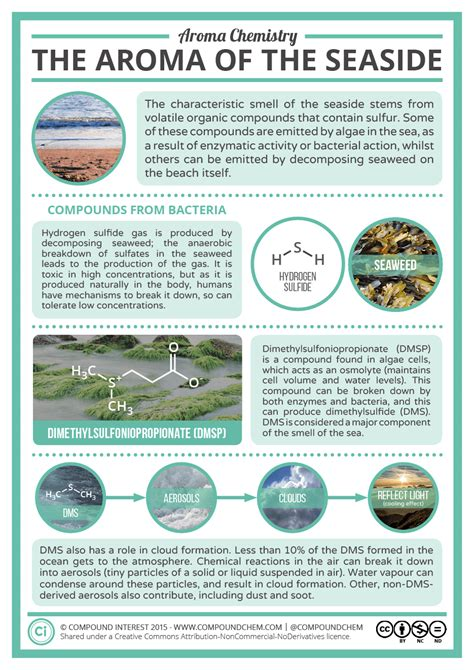 chemical compounds   scent   sea