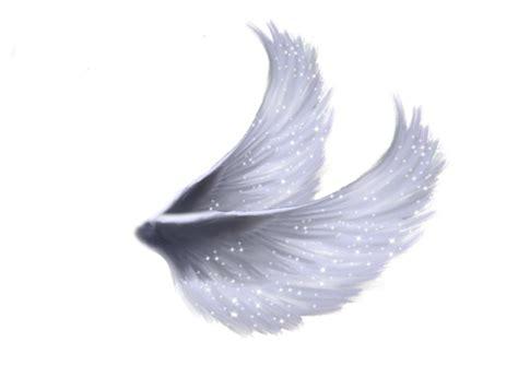 Sayap Wings Sayap Bidadari 45x35cm steam on quot nih aku kasih sayap png kalo mau yang
