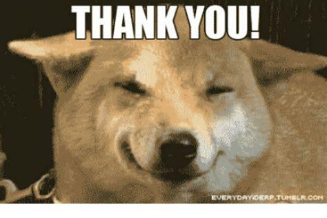 Aww Thank You Meme - thank you everyday derp tumelrcom derp meme on me me