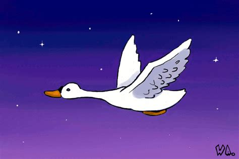 Flying Swan Gif images