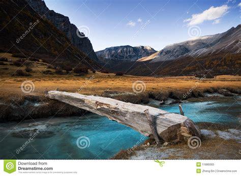 Single Plank Bridge single plank bridge stock photos image 11889393