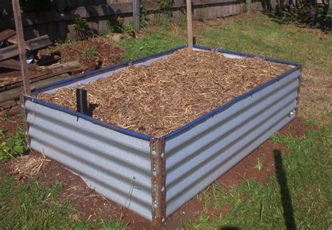 elevated garden beds diy forum diy colorbond raised garden bed