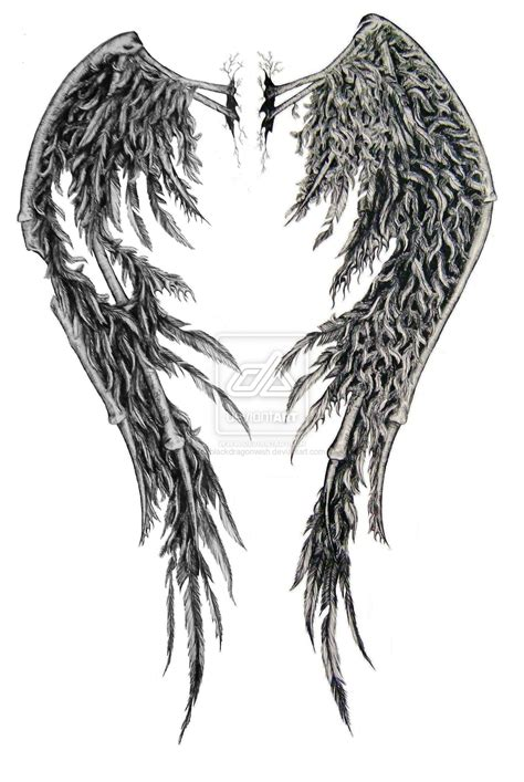 fallen angel wings tattoo designs fallen wings edited by swarzeztier on deviantart
