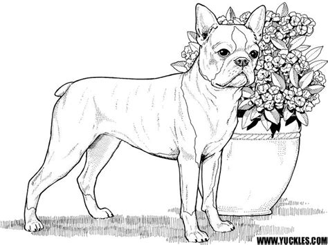 86 coloring pages of dogs to print free printable